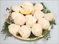 【刺身用】北海道産特大ほたて貝柱 約1kg