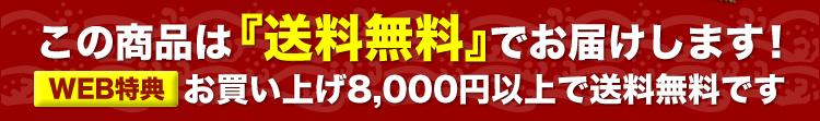 この商品は送料無料でお届けします!【WEB特典】お買い上げ8000円以上で送料無料です