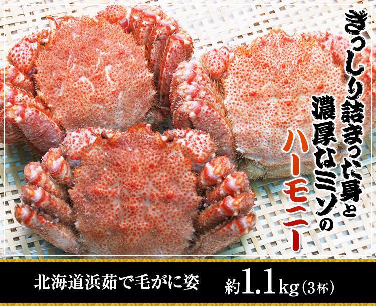 北海道浜ゆで毛がに姿約1.2kg(3杯)