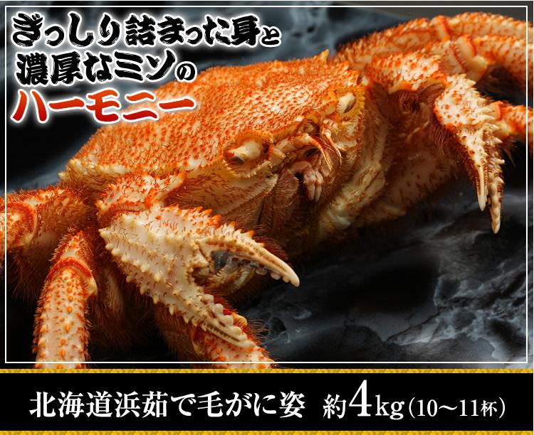北海道浜茹で毛がに姿 約4kg(10?11杯)