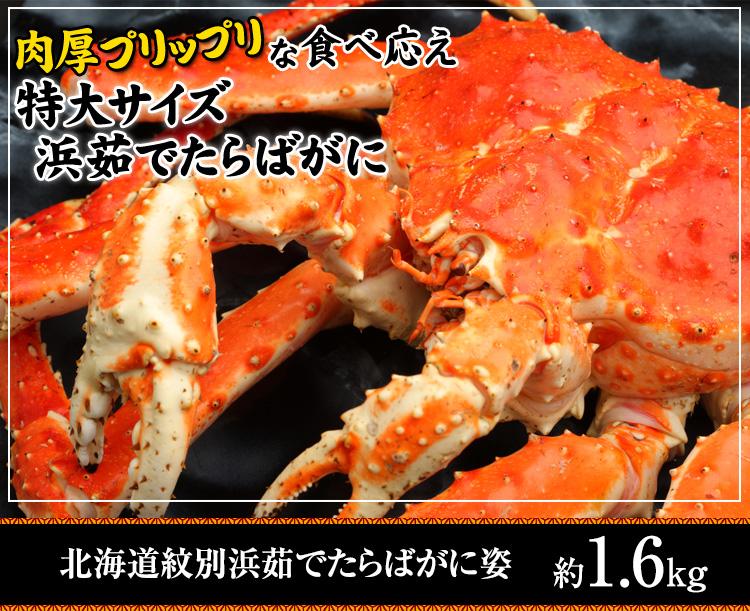 北海道紋別浜茹でたらばがに姿 【冷凍】
