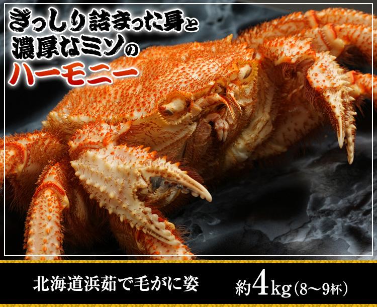 北海道浜茹で毛がに姿 約4kg (8-9杯)