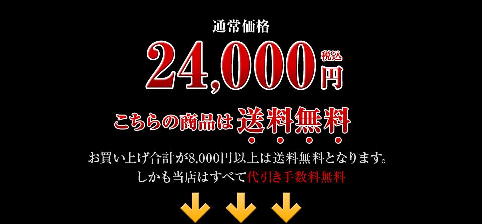 通常料金24,000円