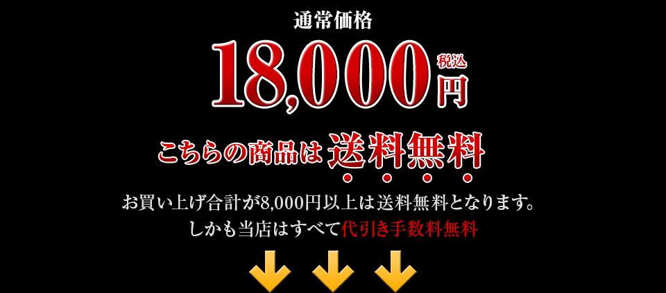 通常料金18,000円