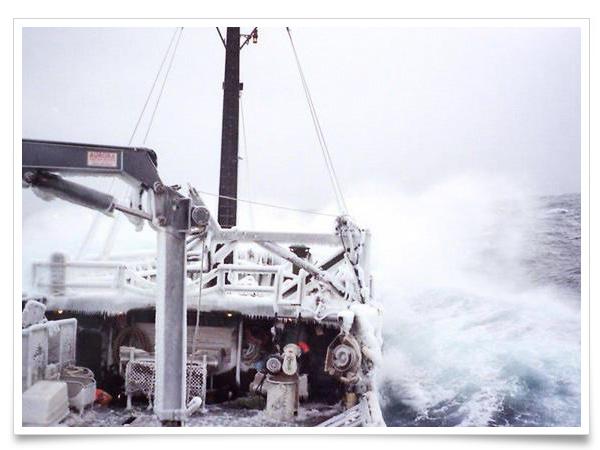 数年前まで、この海域においては、漁獲可能量は漁師の早い者勝ちでした。その為、かなり無茶な操業が横行していたようです。