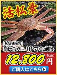 【境港厳選】活松葉ガニ1杯700g前後