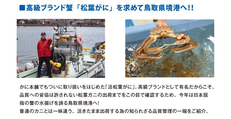 高級ブランド蟹「松葉がに」を求めて鳥取県境港へ。かに本舗でもついに取り扱いをはじめた「活松葉がに」。高級ブランドとして有名だからこそ、品質への妥協は許されない松葉ガニの出荷までをこの目で確認するため、今年は日本屈指の蟹の水揚げを誇る鳥取県境港へ! 普通のカニとは一味違う、活きたまま出荷する為の知られざる品質管理の一端をご紹介。