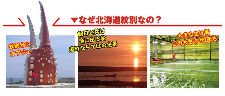 なぜ北海道紋別なの?